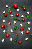 Italian mozzarella cheese and tomatos. Caprese salad ingridients. Italian mozzarella cheese and tomatos isolated on dark concrete background. Caprese salad Royalty Free Stock Image
