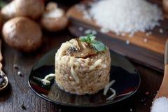 Italian mushroom risotto Royalty Free Stock Photography