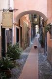 Italian narrow street Stock Image