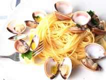 Italian noodle pasta with mussels Stock Photos