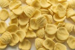 Italian orecchiette pasta stock image