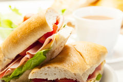 Italian panini sandwich with ham, cheese and tomato. Panini sandwich with ham, cheese and tomato Stock Image