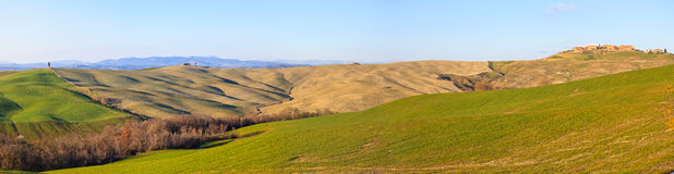 Italian panorama. Cypress tree and rolling hills rural landscape Royalty Free Stock Image