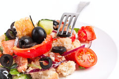 Italian Panzanella Bread salad Royalty Free Stock Photo