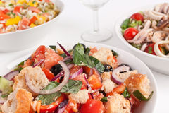 Italian Panzanella Salad Stock Photography