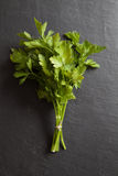 Italian Parsley Royalty Free Stock Images