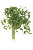 Italian Parsley in a glass with water Royalty Free Stock Photography