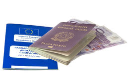 Italian passport and pets passport Royalty Free Stock Images