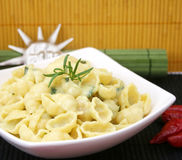 Italian pasta. Some italian pasta with cheese and spinach Royalty Free Stock Photography