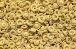 Italian pasta background Royalty Free Stock Photography