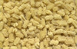 Italian pasta background. Full frame italian pasta background with lots of Radiatori noodles Royalty Free Stock Photography