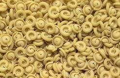 Italian pasta background Royalty Free Stock Photography