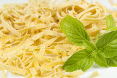 Italian pasta and basil Stock Photography