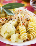 Italian pasta with chicken meat and cauliflower Royalty Free Stock Images
