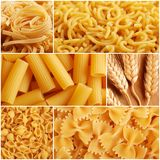 Italian pasta collage Royalty Free Stock Image