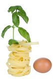 Italian pasta nests isolated on white Stock Photo