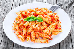 Italian Pasta Penne with Sun-Dried Tomato Pesto, close-up Royalty Free Stock Image