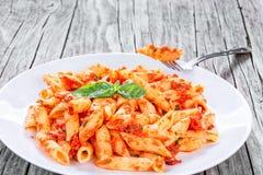 Italian Pasta Penne with Sun-Dried Tomato Pesto, close-up Royalty Free Stock Photo