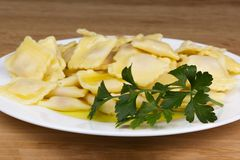 Italian pasta, ravioli with parsley and olive oil. Close up Royalty Free Stock Images