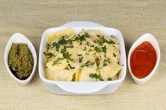 Italian pasta, ravioli with parsley and sauces. Italian pasta, ravioli with parsley, pesto sauce and tomato sauce Royalty Free Stock Photo