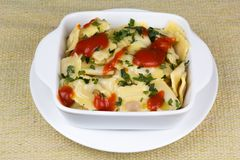 Italian pasta, ravioli with parsley and sauces. Italian pasta, ravioli with parsley, and tomato sauce Royalty Free Stock Photo