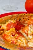 Italian Pasta Shells Royalty Free Stock Images