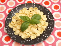 Italian pasta. Some italian pasta called orichetti Royalty Free Stock Images
