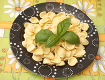 Italian pasta. Some iltalian pasta called orichetti Royalty Free Stock Image