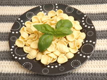 Italian pasta. Some iltalian pasta called orichetti Royalty Free Stock Photos
