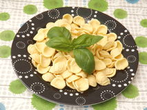 Italian pasta. Some iltalian pasta called orichetti Stock Photo