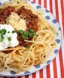 Italian Pasta. Some italian pasta with a sauce of minced meat and parmesan Royalty Free Stock Photography