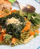 Italian Pasta. Some italian pasta with a sauce of spinach with parmesan Stock Images