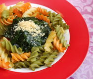 Italian Pasta. Some italian pasta with a sauce of spinach with parmesan Royalty Free Stock Photo