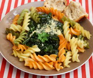 Italian pasta. Some italian pasta with a sauce of spinach with parmesan Royalty Free Stock Images