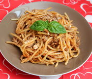 Italian pasta. Some italian pasta with a sauce of tomatoes and meat Stock Photography