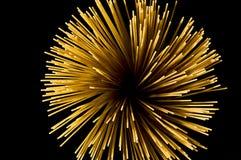 Italian pasta - spaghetti Royalty Free Stock Images
