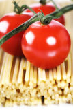 Italian Pasta with tomatoes Royalty Free Stock Photo