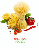 Italian Pasta with tomatoes, paprika and basil Stock Images