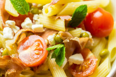 Italian Penne Pasta Salad Royalty Free Stock Image