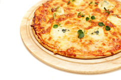 Italian Pizza with Blue Cheese Stock Photography