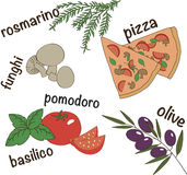 Italian pizza components vector illustration Stock Photos