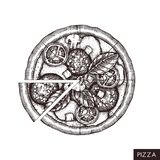 Italian pizza hand drawn sketch. Vector food drawing. Cutted pieces of pizza with ham, mushroom, ham, tomatoes, basil leaves . Fas. T food vector illustration royalty free illustration