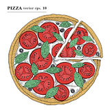 Italian Pizza margarita hand drawn vector illustration. Can be use for pizzeria, cafe, restaurant. Italian Pizza margarita hand drawn vector illustration. Can stock illustration