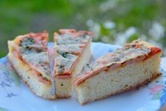 The Italian pizza on a plate Stock Photography