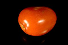 Italian Plum Tomato. Photo of an Italian Plum Tomato royalty free stock images