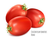 Italian plum tomatoes Roma. Royalty Free Stock Images