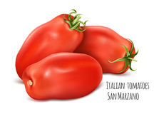 Italian plum tomatoes San Marzano. Royalty Free Stock Photo
