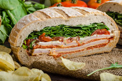 Italian Pressed Sandwich royalty free stock image