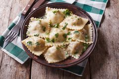 Italian ravioli on a plate with herbs. horizontal top view Royalty Free Stock Images