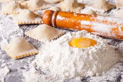 Italian ravioli with raw ingredients close-up. Horizontal. Italian ravioli with raw ingredients on the table close-up. Horizontal Royalty Free Stock Photos